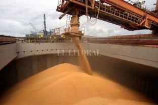 Denuncian que les impiden cargar granos en los puertos