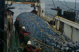Trabajadores de la pesca piden al gobierno medidas sanitarias específicas ante la pandemia
