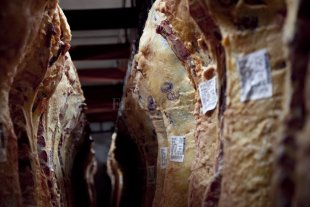 La industria frigorífica deberá informar semanalmente el precio de la carne vacuna -  -