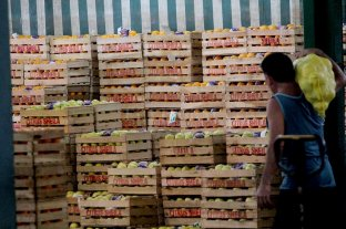 Acuerdan precios mayoristas sugeridos para frutas y verduras en la provincia