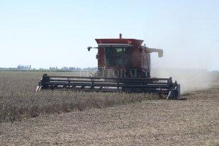 Como garantizar la eficiencia de la cosecha de granos gruesos