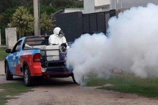 Córdoba registró 1345 casos de dengue con un aumento de 400 en una semana