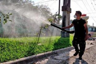 Aumentan los casos de dengue en Tucumán: ya hay más de 350