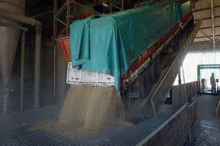 Comienza a cobrar intensidad el ingreso de soja a los puertos
