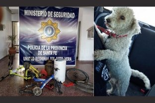 Vera: se robaron hasta el perrito de una familia, pero fueron detenidos
