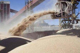 Buen avance de la cosecha de soja