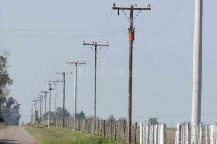 Colonia Bicha: preocupa el robo de líneas eléctricas en zona rural