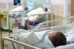 Recién nacidos podrán acceder a la cobertura médica de sus padres sólo acreditando nacimiento