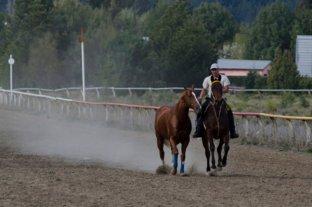 San Isidro, Palermo y La Plata habilitaron sus pistas sólo para entrenar