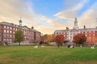 La Universidad de Harvard lanzó cursos gratuitos para hacer durante la cuarentena
