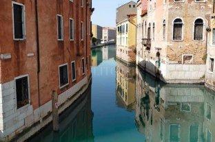 Venecia sin gente, con agua limpia y fauna