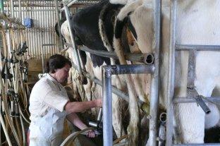 El gremio lechero hace paro de 24 horas pero procesará materia prima solo si es donada