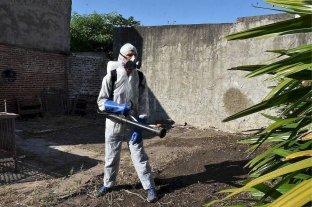 En una semana, aumentaron más del 25% los casos de dengue en la provincia