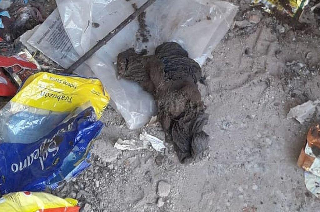 El arma estaba envuelta en trapos, dentro de una tubería de desagüe cloacal. Crédito: Gentileza