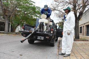 Por qué hay que prevenir el dengue durante todo el año