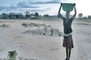 Santafesinos ayudan a formar ingenieros  en Angola para aumentar el agua potable - Esfuerzo de todos los días. Una mujer busca agua con una palangana en una perforación hecha en la ciudad de Kuito -