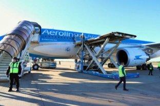 Llegó otro avión de China con insumos para los equipos que trabajan casa por casa contra el Covid-19 -  -