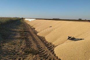 La Sociedad Rural de Santa Fe y legisladores repudian ataques contra productores