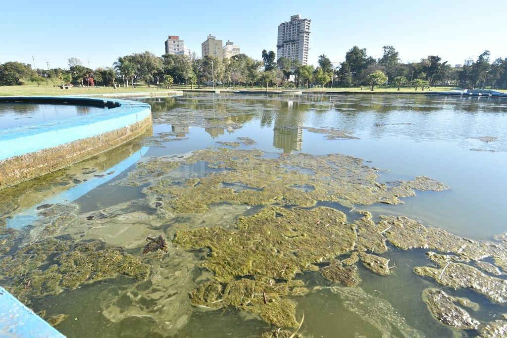 Lago Artificial. Así se encuentra actualmente el espejo de agua del lago principal del Parque. Crédito: Guillermo Di Salvatore