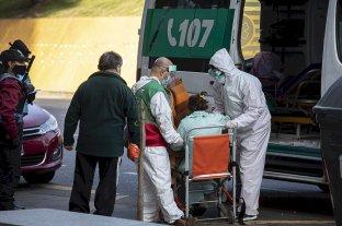 Coronavirus: 17 muertes y 564 casos en las últimas 24 horas en Argentina -  -