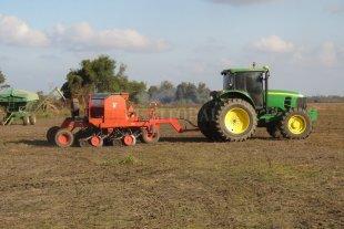 Avanza la siembra de trigo con óptimos niveles de humedad en los suelos