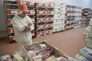 Exportaciones de carne bovina alcanzaron los 200 millones de dólares