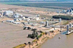 Seis meses que sacudieron a los mercados de granos