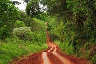 """La turística Ruta de la Yerba Mate fue declarada """"patrimonio cultural y turístico"""" de Misiones"""