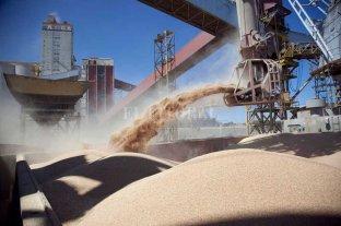La industria agroexportadora cuestiona la intervención de Vicentín