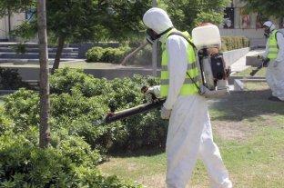 Jujuy alcanza los 4.901 casos de dengue y transita el mayor brote de su historia