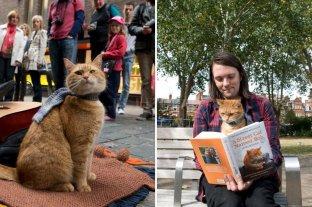 Falleció Bob, el gato que le salvó la vida al músico James Bowen e inspiró libros y películas