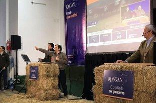 Anuncian la primera plataforma digital de negociación de ganado porcino