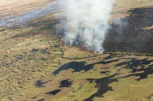 Sequía y bajante del Paraná: escenario propicio para los incendios en las islas