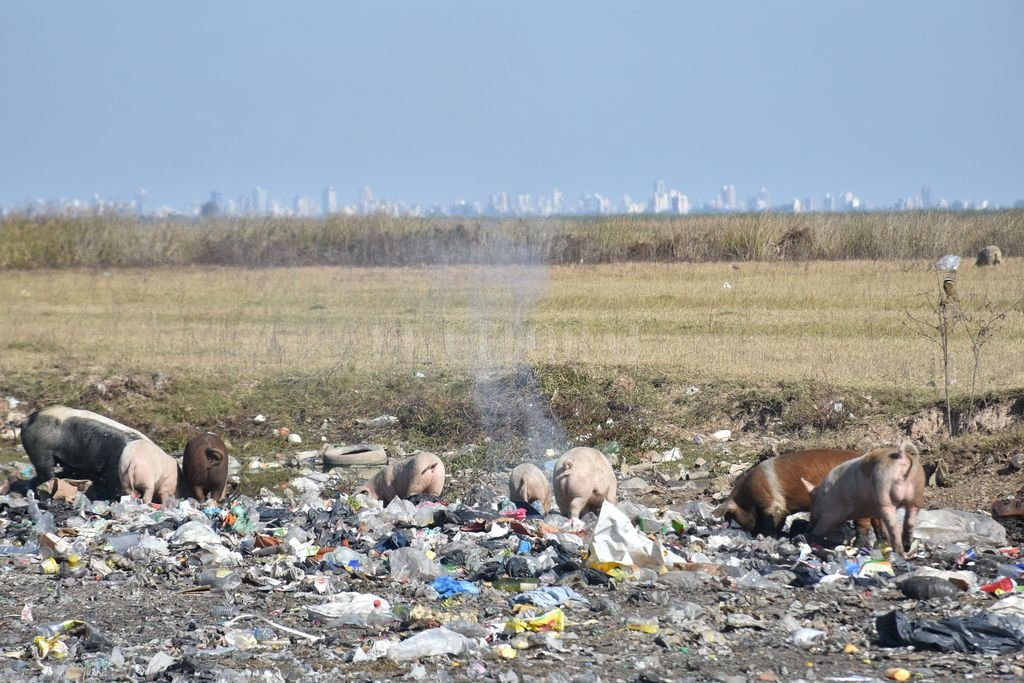 En Arroyo Leyes hay basurales a cielo abierto sobre la orilla de la Setúbal. Y cuando el río crece la basura navega aguas abajo, contaminando toda la cuenca, incluida la laguna, en Santa Fe. Crédito: Flavio Raina