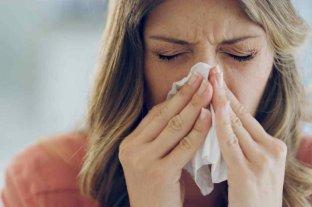 Semana Mundial de la Alergia: especialistas llaman a fomentar los cuidados en pandemia