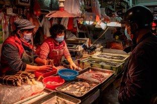 China cerrará los mercados con aves vivas