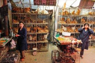 Después del coronavirus, China cerrará gradualmente los mercados donde se venden aves vivas