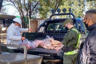 """Intensa actividad de """"Los Pumas"""" en varios puntos de la provincia - Durante los operativos también se procedió al secuestro preventivo de 180 kg de carne. -"""