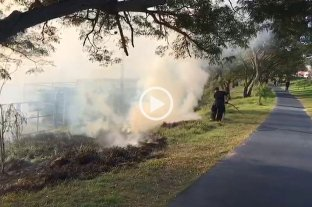 Video: quema de pastizales en el Parque del Sur  -  -