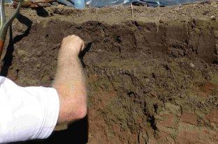 Presentan una guía online para caracterizar los suelos en producción