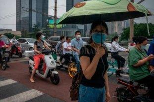 Para la OMS el caso de peste bubónica en China no constituye una amenaza