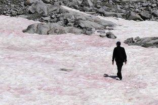 Investigan las misteriosas causas que tiñeron de rosa al glaciar de Presena