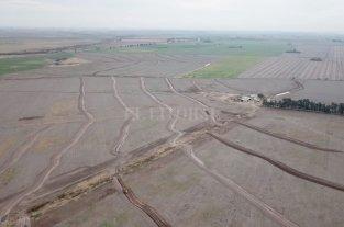 Terrazas, una vieja herramienta que vuelve al rescate de los suelos agrícolas