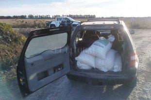 Calchaquí: aprehendido por robar seis bolsas de maíz