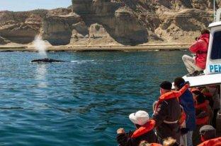 """Chubut recibió la distinción internacional como """"destino seguro"""" para el turismo"""