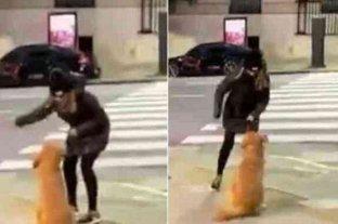 La filmaron maltratando a su perro, se hizo viral y ahora va a la justicia