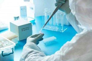 ANMAT aprobó el primer test de coronavirus desarrollado 100% en Argentina