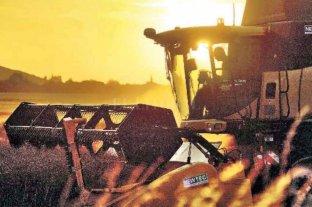 La cadena agroindustria tiene un plan