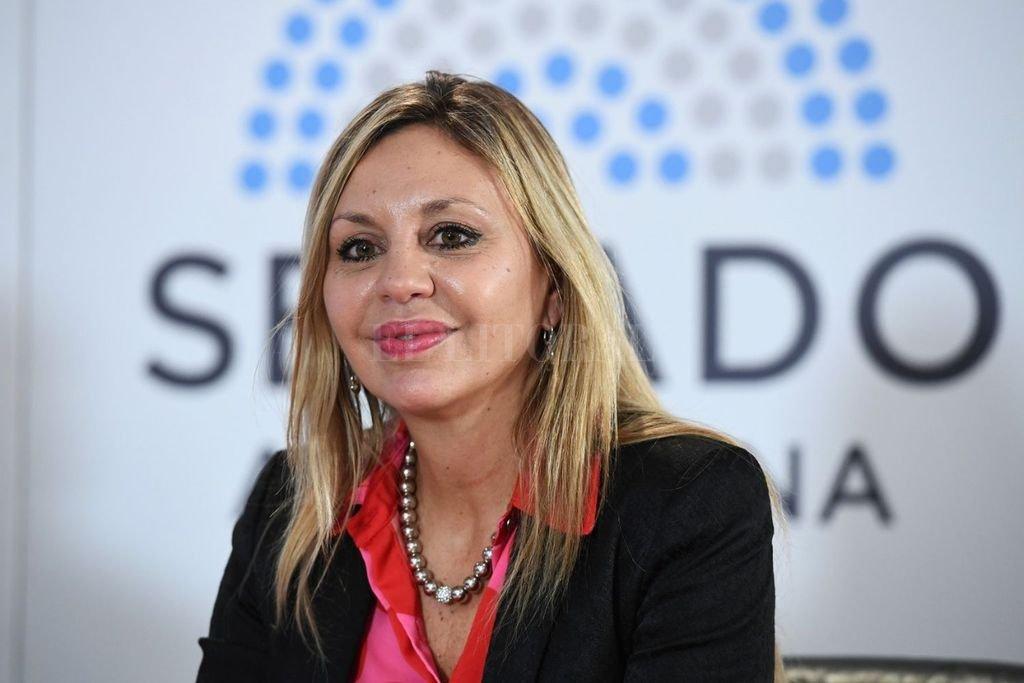 Iniciativa de la senadora Sacnun. Crédito: Archivo El Litoral