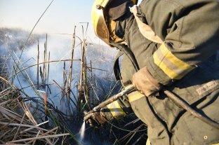 El Ministerio de Ambiente de la Nación es querellante en la causa por incendios en las islas del Paraná